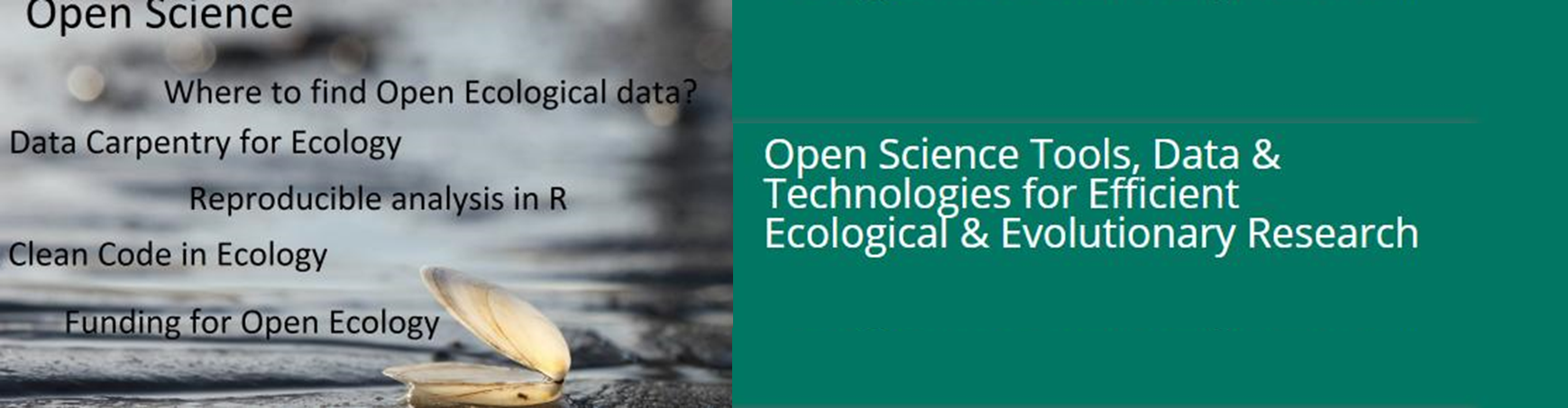Free workshops and a mini-symposium on use of open science tools in ecological and evolutionary research for ecologists, evolutionary biologists and interested data scientists